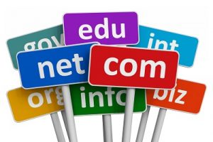 domain_uzanti