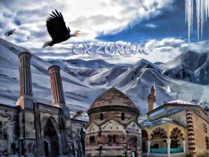 SEO Erzurum