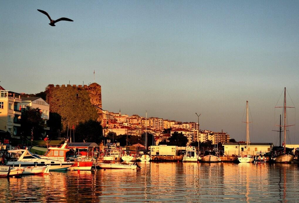 SEO Sinop