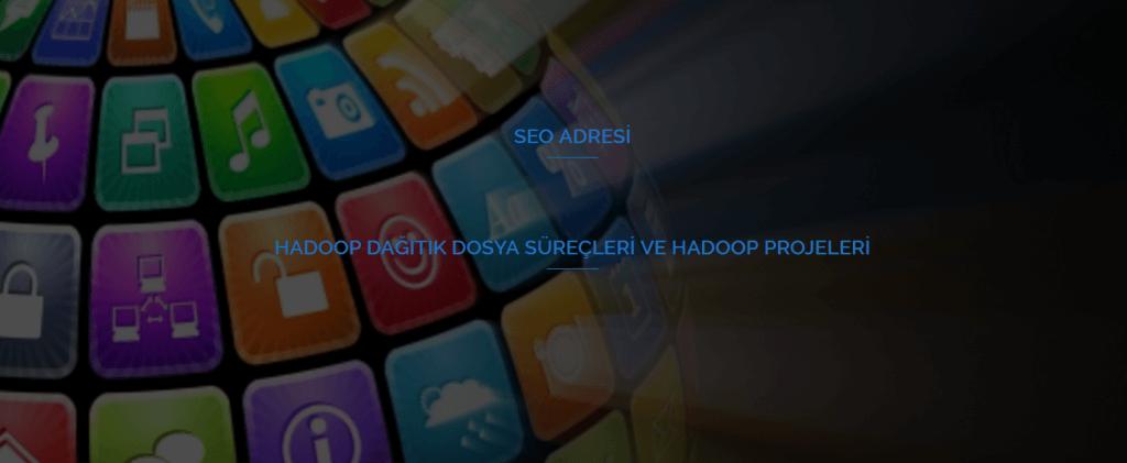 HADOOP Dağıtık Dosya Süreçleri ve HADOOP Projeleri